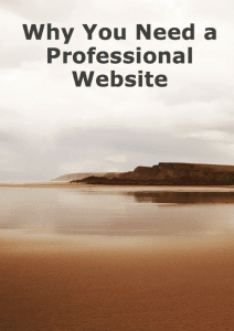 """why you need a professional website"""